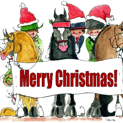 MERRY CHRISTMAS from our family to yours | Mystic Meadows Training