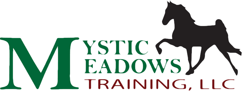 Mystic Meadows Training